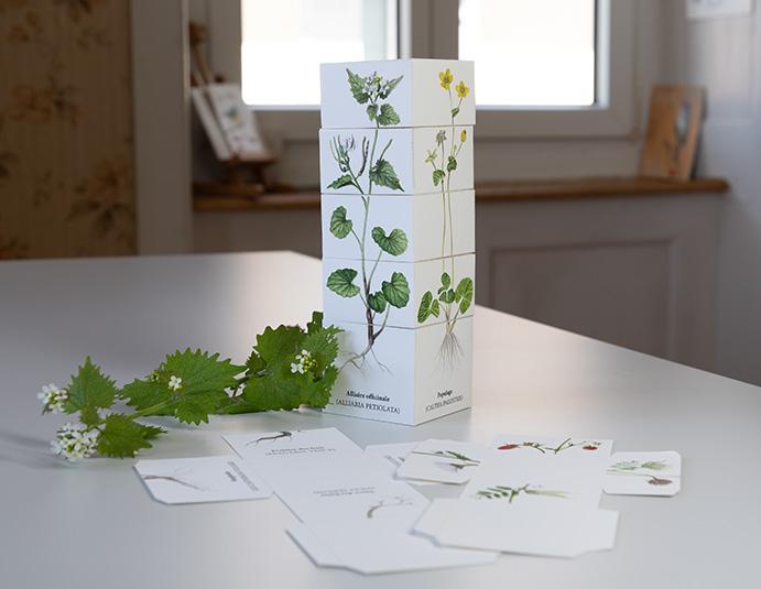 Ein Würfelturm mit botanischen Illustrationen